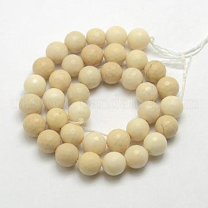 Natural Petrified Wood Beads StrandsUK-G-UK0001-114F-10mm-1